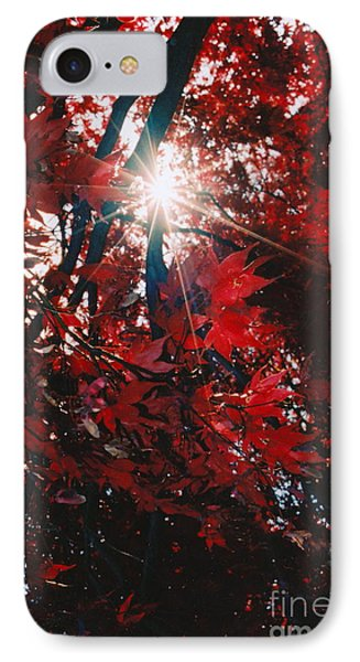 IPhone Case featuring the photograph Sunstar by Jesse Ciazza