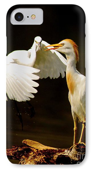 Suprised Cattle Egret IPhone Case by Robert Frederick