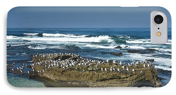 Surf Waves At La Jolla California With Gulls Perched On A Large Rock No. 0194 IPhone Case by Randall Nyhof