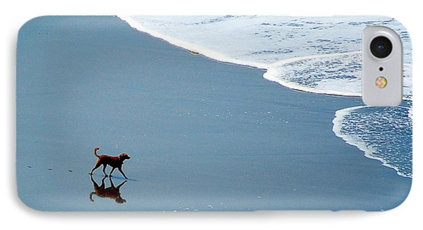 IPhone Case featuring the photograph Surfer Dog by AJ  Schibig