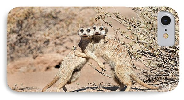 Suricates At Play IPhone Case by Tony Camacho