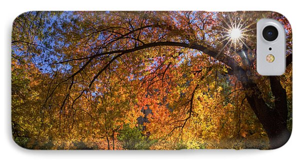 Surrounded By Autumn's Color IPhone Case by Sue Cullumber