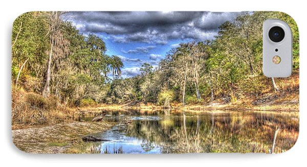 IPhone Case featuring the photograph Suwannee River Scene by Donald Williams