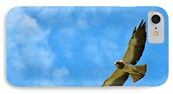 Swainson's Hawk Snake River Birds Of Prey Natural Conservation Area Phone Case by Ed  Riche
