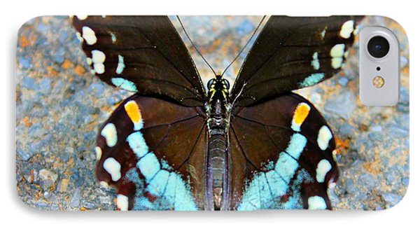 IPhone Case featuring the photograph Swallowtail Beauty by Candice Trimble