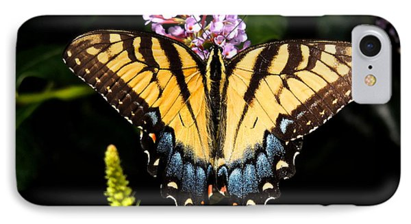 IPhone Case featuring the photograph Swallowtail Beauty by Eve Spring