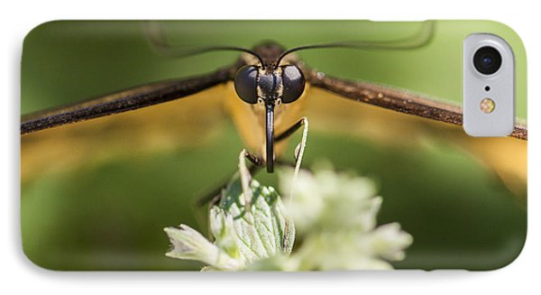 Swallowtail Butterfly Phone Case by Adam Romanowicz