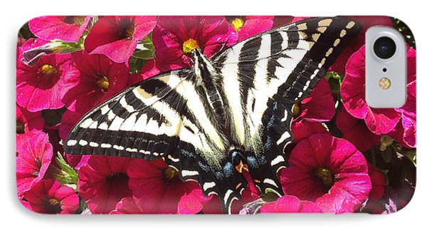 Swallowtail Butterfly Full Span On Fuchsia Flowers IPhone Case