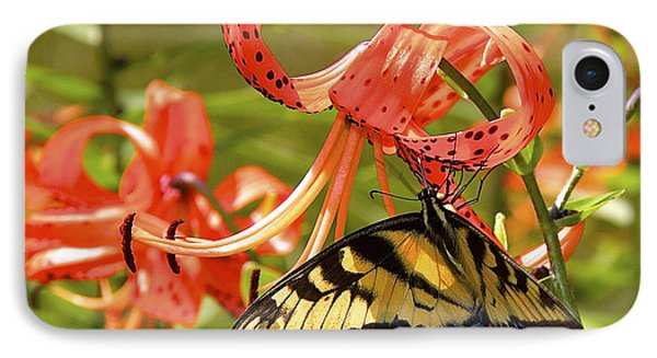 Swallowtail Butterfly IPhone Case by Susan Crossman Buscho