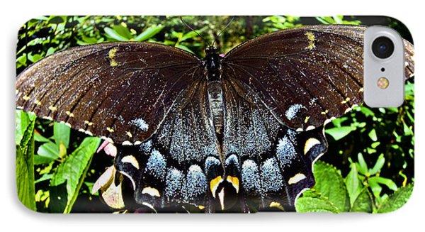 Swallowtail Butterfly Phone Case by Susan Leggett
