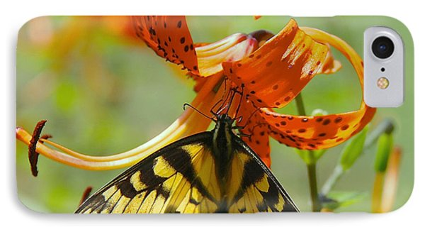 Swallowtail Butterfly3 IPhone Case by Susan Crossman Buscho