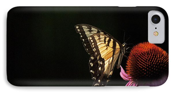 Swallowtail In The Light IPhone Case by Elsa Marie Santoro