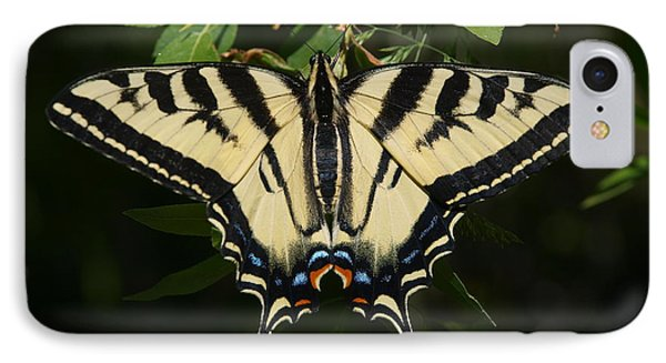 IPhone Case featuring the photograph Swallowtail  by Jenessa Rahn
