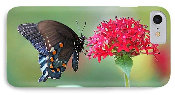Swallowtail Phone Case by Pamela Gail Torres