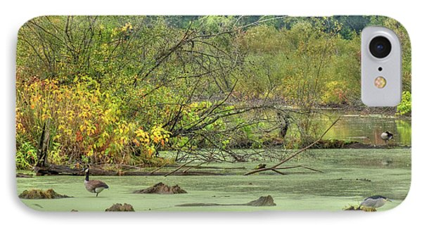 Swamp Birds Phone Case by Deborah Smolinske