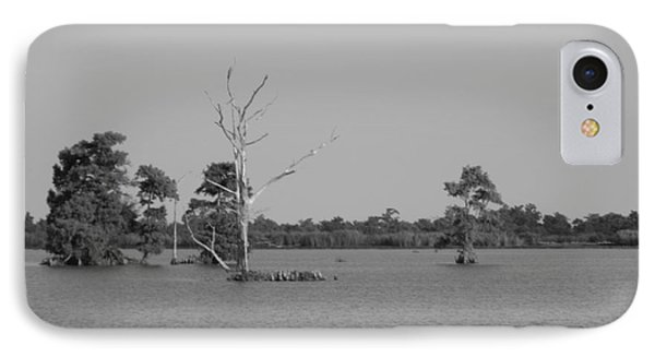 IPhone Case featuring the photograph Swamp Cypress Trees Black And White by Joseph Baril