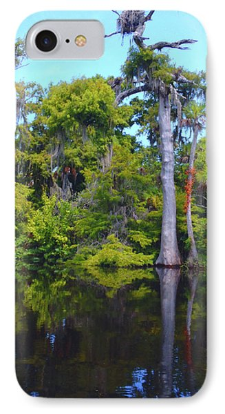 Swamp Land IPhone Case by Carey Chen