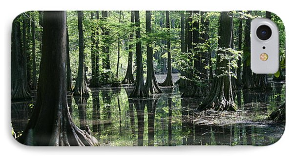 Swamp Land IPhone Case by Cathy Harper