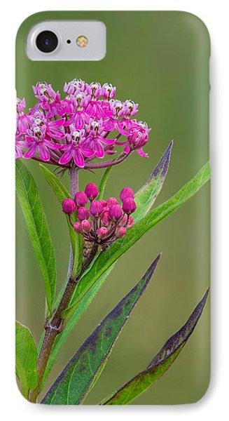 Swamp Milkweed IPhone Case