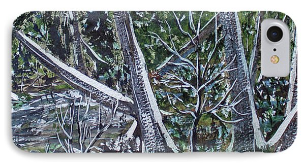 IPhone Case featuring the painting Swamp Of The White Cedars by Jack G  Brauer