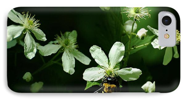 Swamp Rose With Carpenter Bee Phone Case by Rebecca Sherman