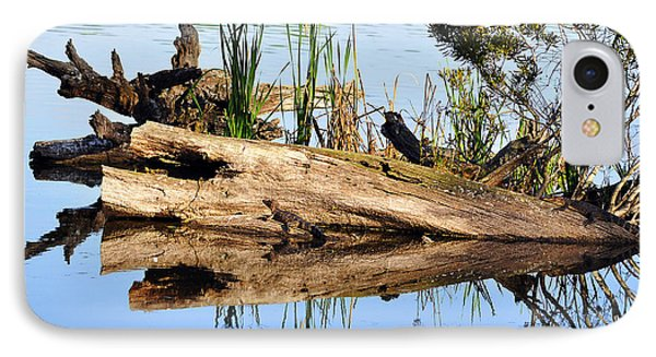 Swamp Scene Phone Case by Al Powell Photography USA