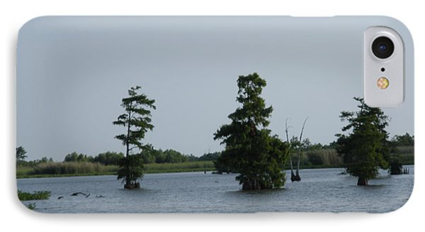 IPhone Case featuring the photograph Swamp Tall Cypress Trees  by Joseph Baril