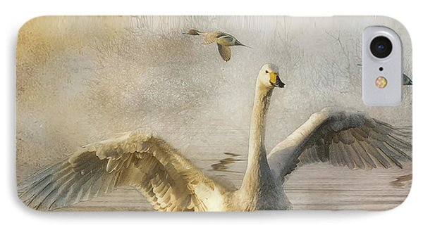 IPhone Case featuring the photograph Swan At Sundown by Brian Tarr