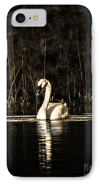 IPhone Case featuring the photograph Swan B/w by Rose-Maries Pictures