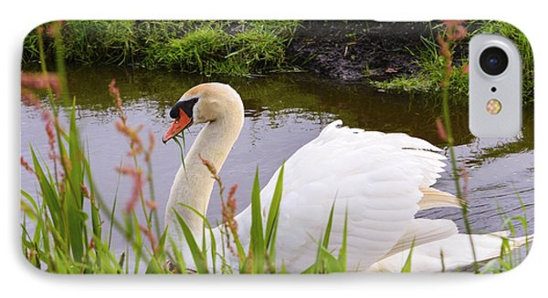 Swan In Water In Autumn IPhone Case