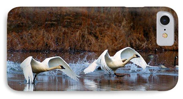 Swan Lake Phone Case by Mike  Dawson