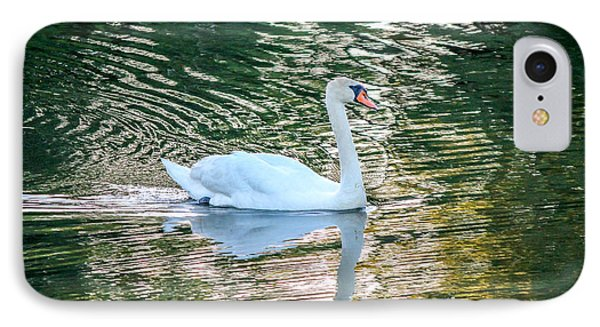 IPhone Case featuring the photograph Swan On Water  by Trace Kittrell
