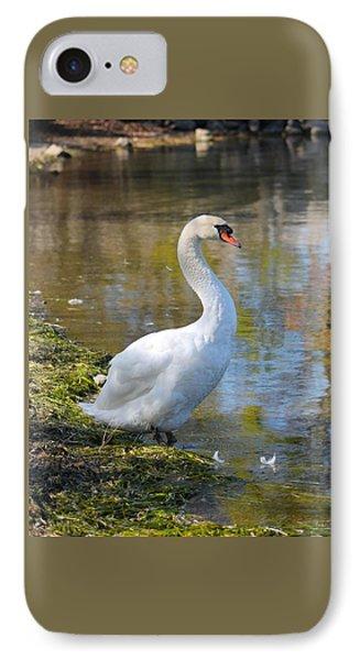 Swan Portrait IPhone Case