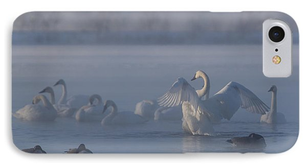 IPhone Case featuring the photograph Swan Showing Off by Patti Deters