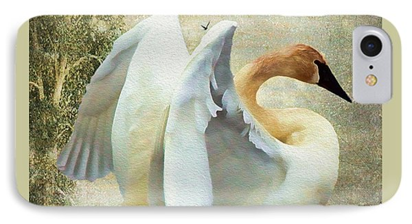Swan - Summer Home IPhone Case by Kathy Bassett