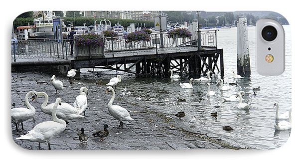 Swans And Ducks In Lake Lucerne In Switzerland Phone Case by Ashish Agarwal