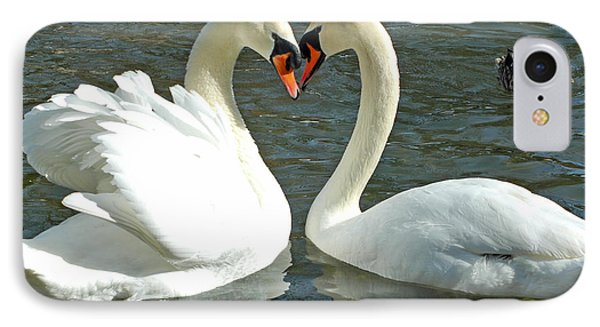 IPhone Case featuring the photograph Swans At City Park by Olivia Hardwicke