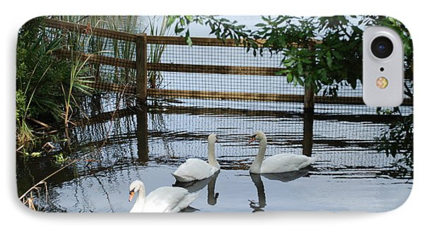 Swans In The Pond IPhone Case by Beverly Stapleton