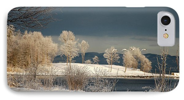 IPhone Case featuring the photograph Swans On A Frosty Day by Randi Grace Nilsberg