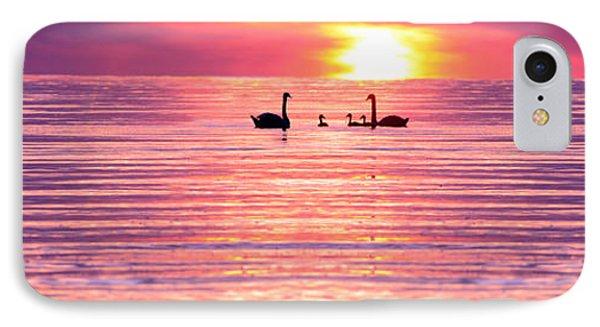 Swans On The Lake Phone Case by Jon Neidert