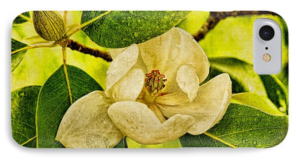Sweet Bay Magnolia After The Rain Phone Case by Lois Bryan