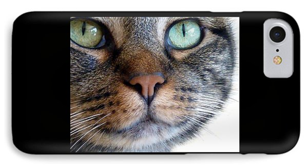 Sweet Green Eyes IPhone Case by Patricia Strand