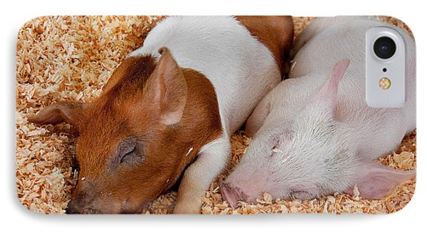 IPhone Case featuring the photograph Sweet Piglets Nap by Valerie Garner