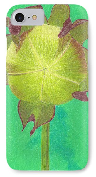 IPhone Case featuring the drawing Sweet Pitcher Plant by Sheila Byers