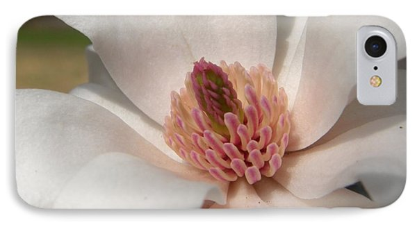 Sweet Star Magnolia IPhone Case