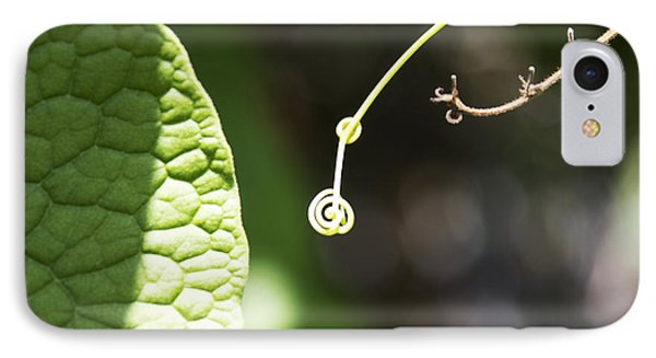 Sweet Tendril IPhone Case by Megan Dirsa-DuBois