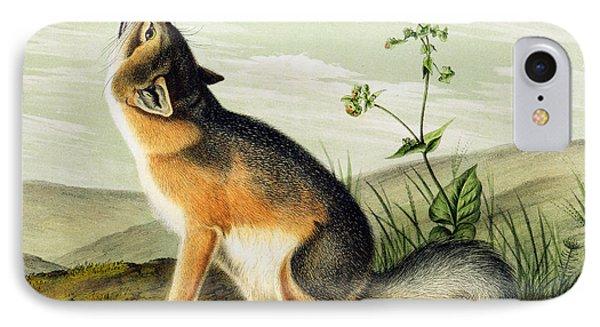 Swift Fox IPhone Case by John James Audubon