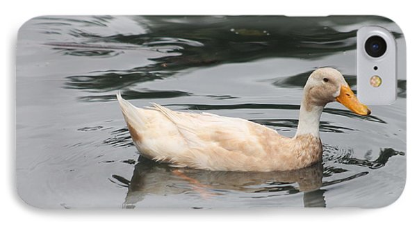 Swimming Duck IPhone Case by Pamela Walton