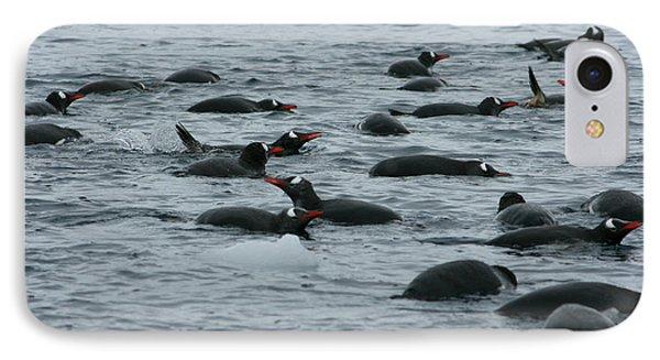 Swimming Gentoo Penguins IPhone Case