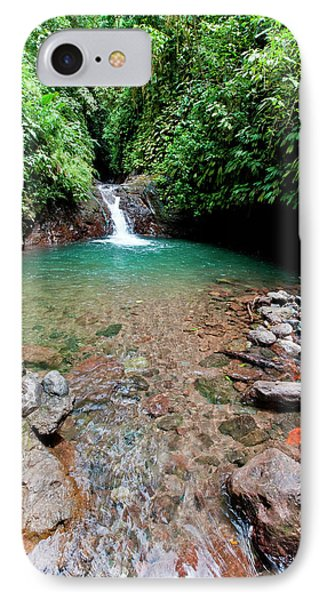 Swimming Hole, Rainmaker Conservation IPhone Case by Susan Degginger
